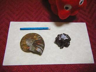 隕石どす2.jpg