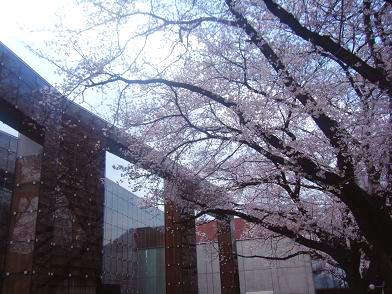 2010春.jpg