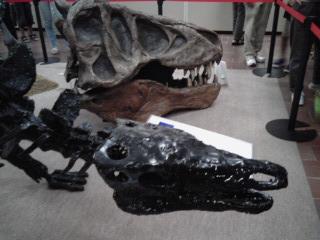 ごついサウルス.jpg