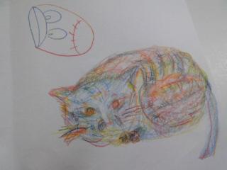 猫 D.jpg