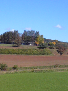 牧場遠景.jpg